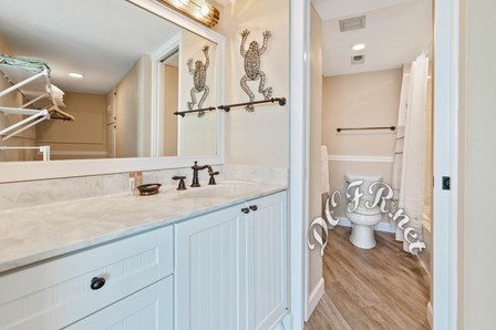 Master Vanity and Toilet Area